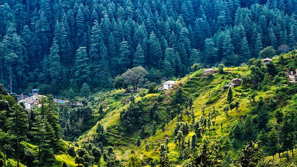 Ranikhet - 356 km