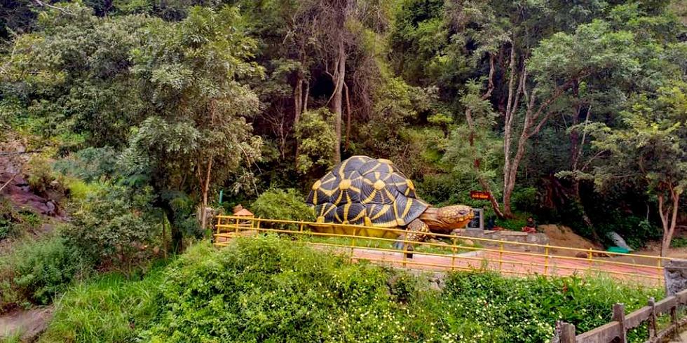 Wildlife Sanctuaries in India Chinnar Wildlife Sanctuary in Munnar