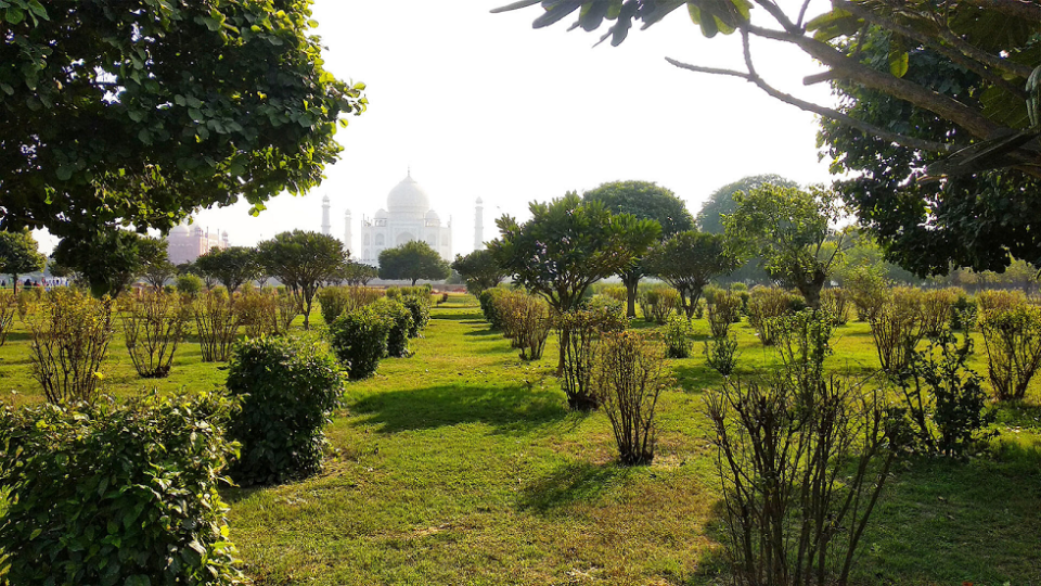Surprising facts about Mehtab Bagh